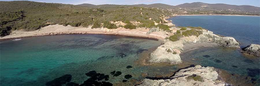 Vai alle spiagge dell'Isola d'Elba