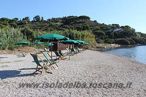 dog beach a mola isola d'elba